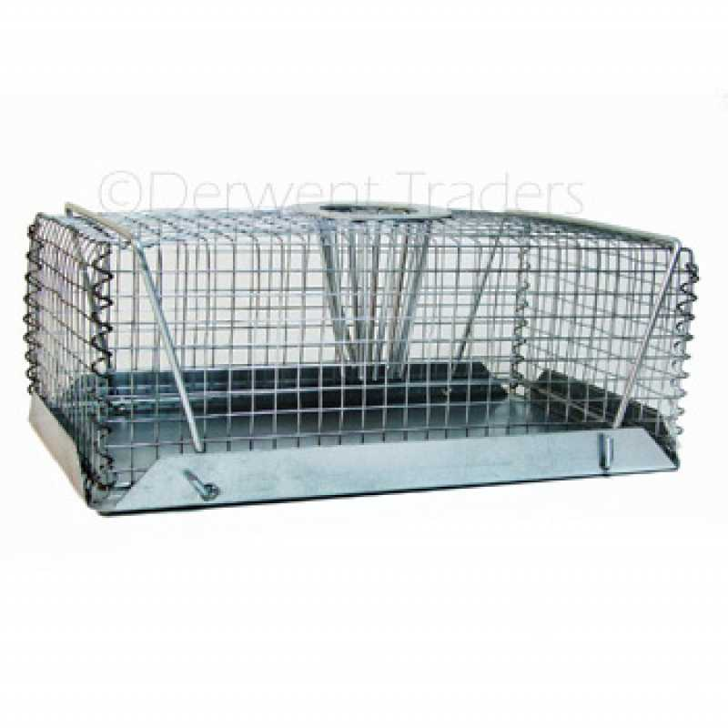 Wm Rat Crab Pot Style Trap Sm